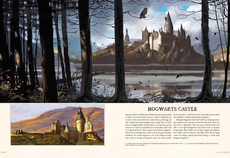 Harry Potter - Page to Screen (2)