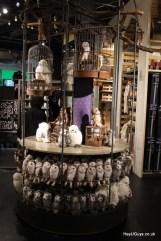 Harry Potter Studio Tour - HeyUGuys (228)