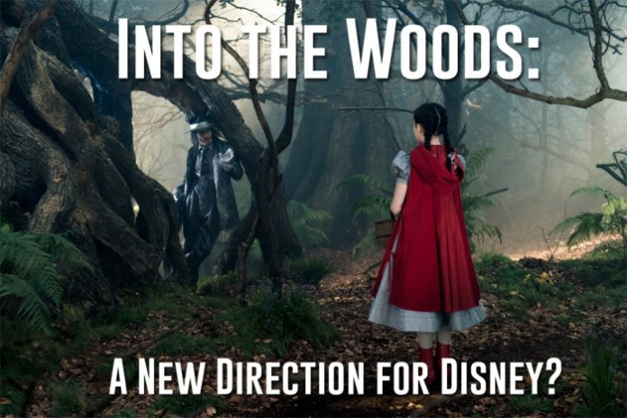 Into-the-woods-direction