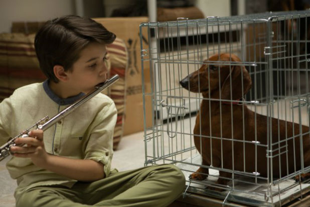 Sundance Film Festival: London 2016 - Wiener-Dog Review