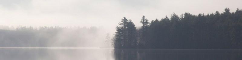 Saturday Shorts: Mist Dancers