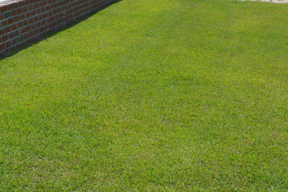 Lawn Care Services H Amp H Landscaping Amp Lawn Care
