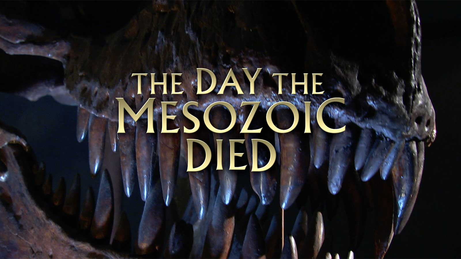 The Day The Mesozoicd