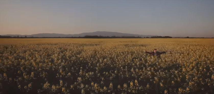 CARSKI KNEZ - Zauvijek (Video)