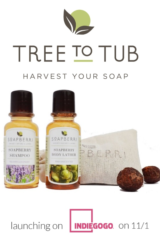 tree-to-tub