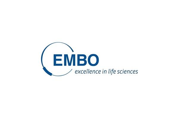 EMBO Kurs ve Çalıştay Düzenleme Desteği
