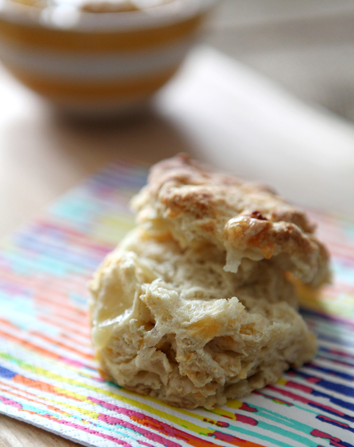 Cheddar Biscuits // The Speckled Palate