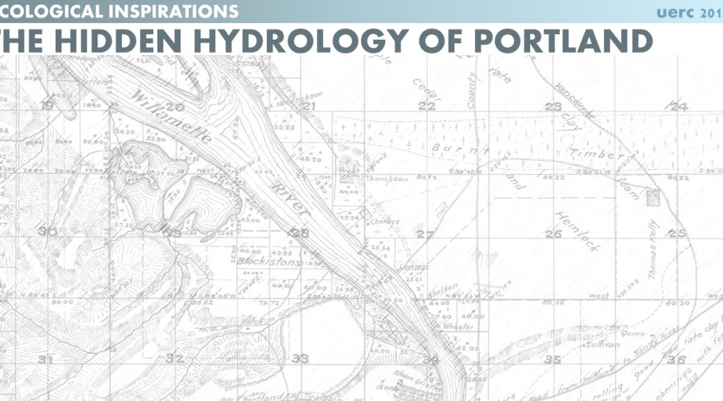 Ecological Inspirations Hidden Hydrology