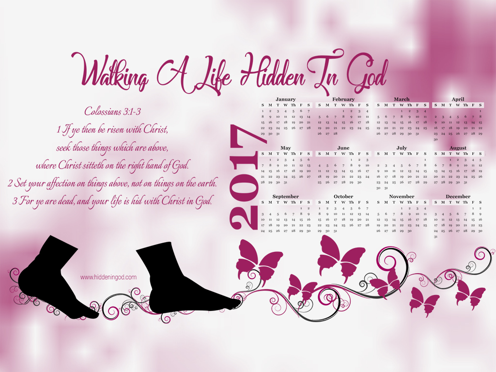 Hidden in God 2017 full year calendar