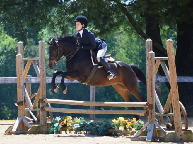 Hidden's Minuet - a Horse for Sale in Winston-Salem