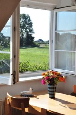 Belegungskalender, Blick aus Fenster Ferienwohnung Am wiesenbiotop 1