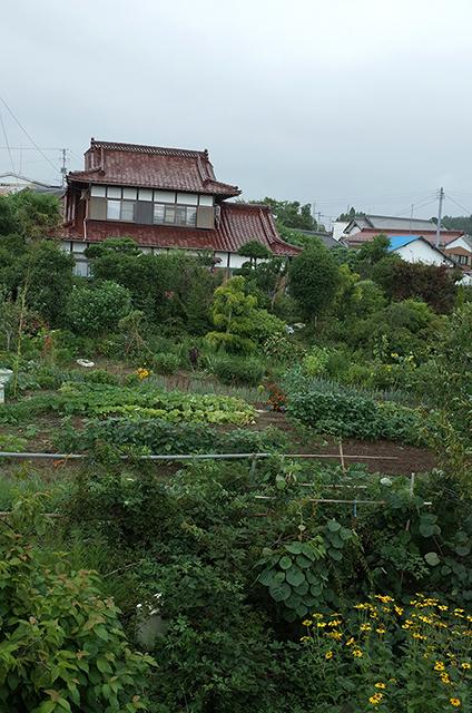 Kesennuma Oshima -Landscape during a walk 3-  Hidemi Shimura