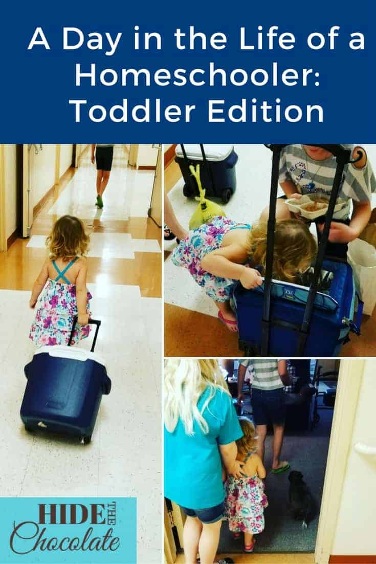 Recently, we had the opportunity to babysit a toddler while homeschooling. It involved fork stabbings, ice cream stickiness and a tragic moment with a chicken bouillon cube. The following is our Day in the Life: Toddler Version.