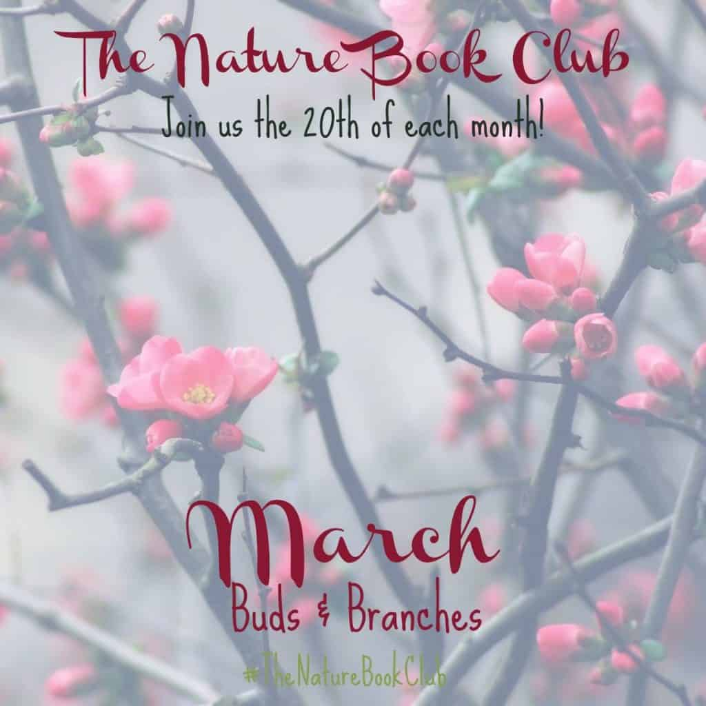 Nature Book Club March Buds and Branches