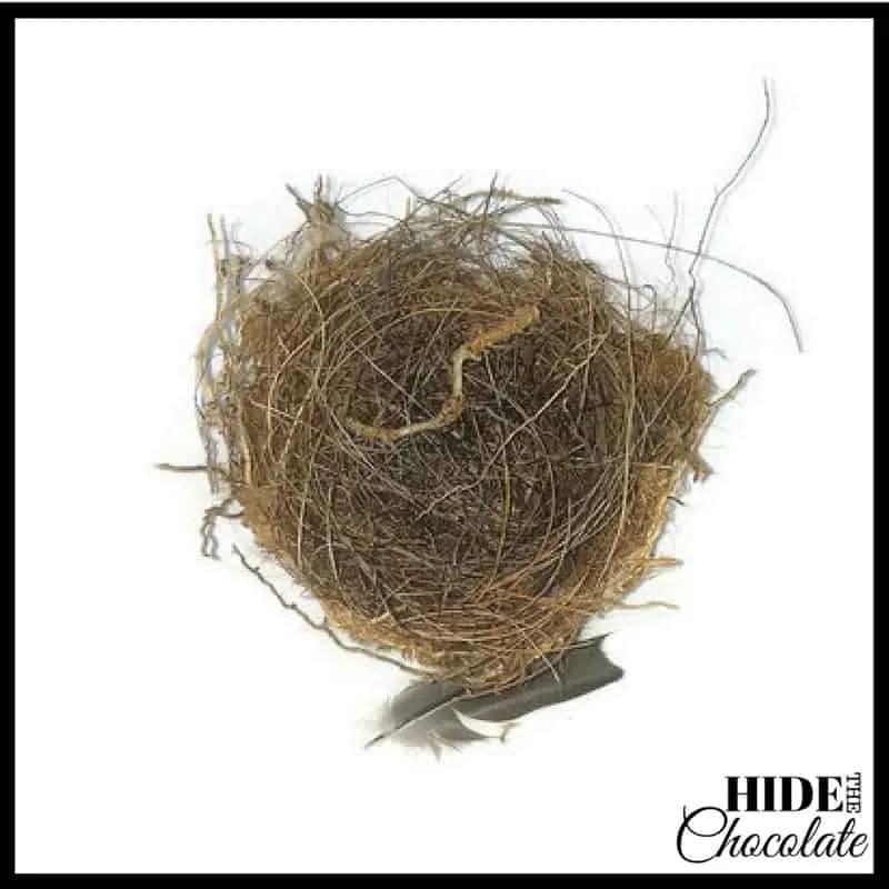 The Golden Egg Nature Book Club - Bird's Nest