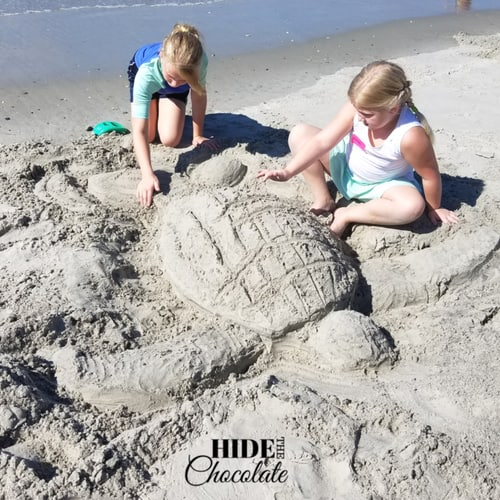 Turtle in the Sea Nature Book Club - Turtle made of sand