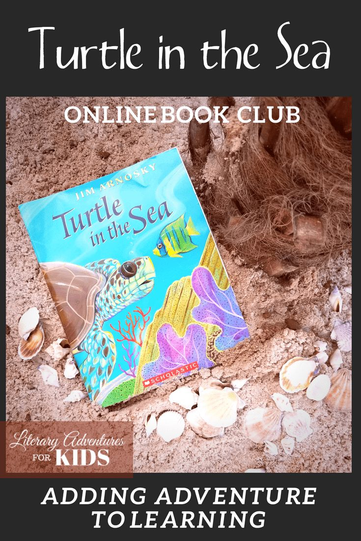 Turtle in the Sea Online Book Club for Kids ~ A Nature Adventure