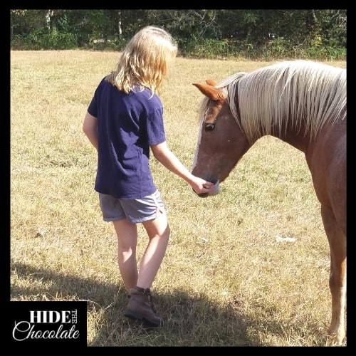 How to Experiment with Apples in Fun and Tasty Ways - Horses