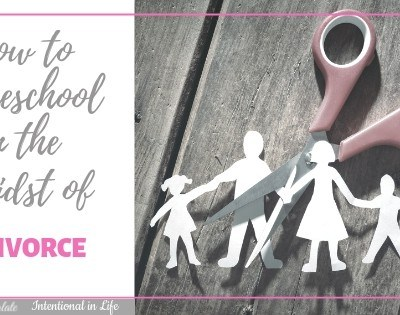 How to Homeschool in the Midst of Divorce ~ An Interview