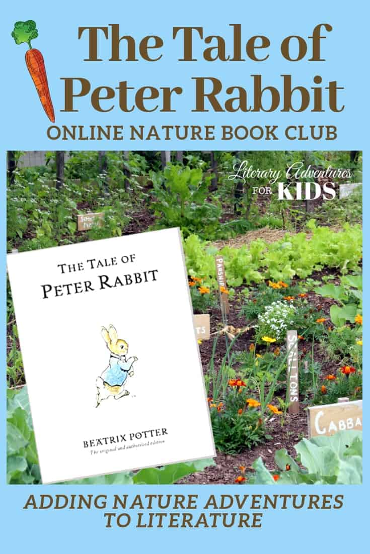 The Tale of Peter Rabbit Online Book Club ~ A Nature Adventure