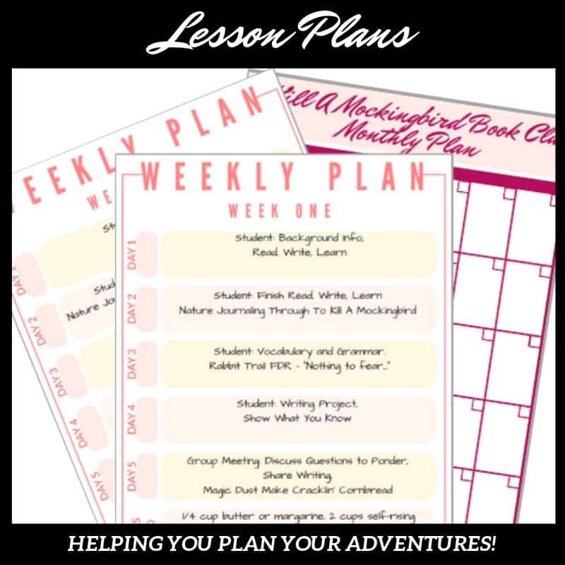 Lesson Plans for American Classic Literature Series