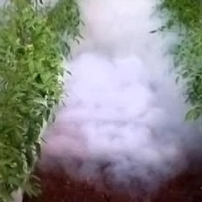 Sistema termonebulizacion invernadero