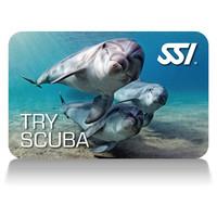 Try-Scuba-card