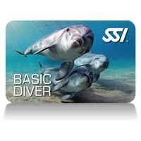 Basic-Diver-card