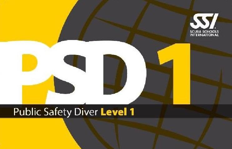 PSD-Nivel-1