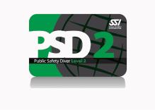 PSD-Nivel-2-card