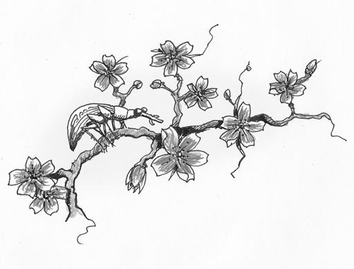 bug on blossom