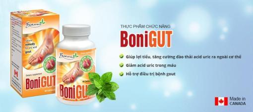 bonigut-botania-natural-remedy-uric-acid-gout-relief