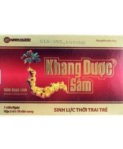 Khang Duoc Ginseng Panax Vietnamensis