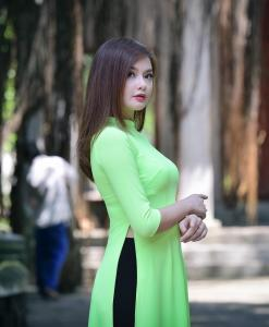 Double Layers Lime Chiffon Ao Dai