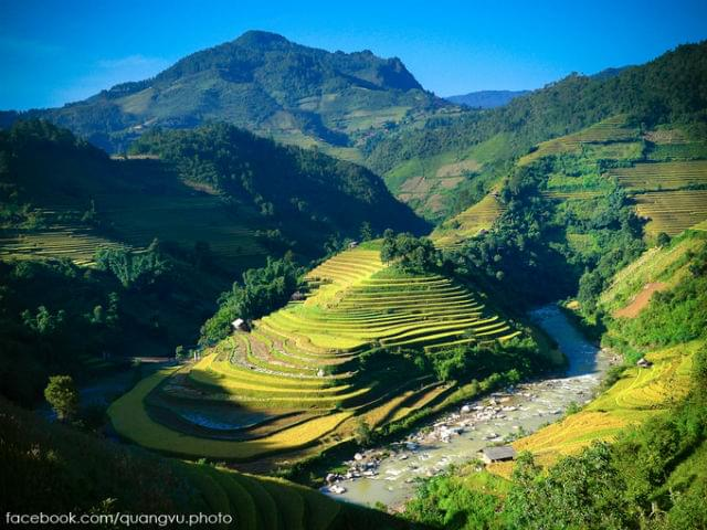Mu Cang Chai Terraced Rice Fields