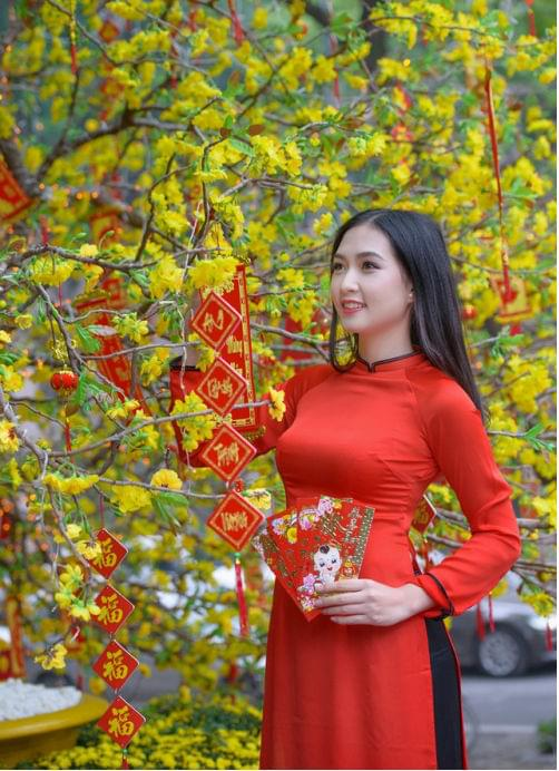 Orange Red Ao Dai Vietnam Custom Made 4