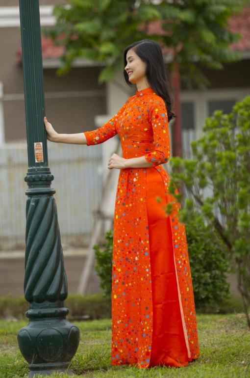 Viet Nam Ao Dai Tailor Shop 3