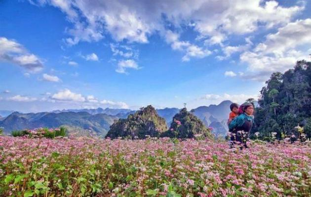 Fête des fleurs de Ha Giang TAM GIAC MACH