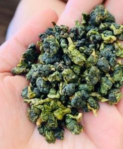 Tam Chau Oolong tea2