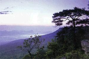 De 5 mooiste nationale parken van Thailand