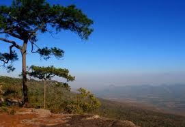 Het prachtige Phu Kradung Nationaal Park