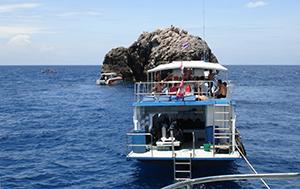 Koh Tao, een duikparadijs