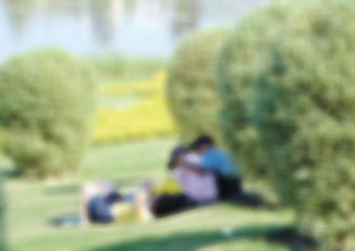 """'Geen seks in het park, alstublieft"""""""