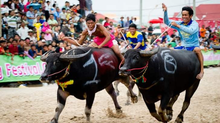 Chon Buri Buffalo Racing