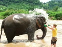Actief Thailand