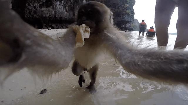 Mooie video van Thaise eilanden
