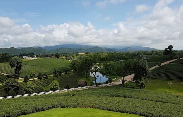 Twee dagen in Chiang Rai: hoge bergen en Little Yunnan (2)