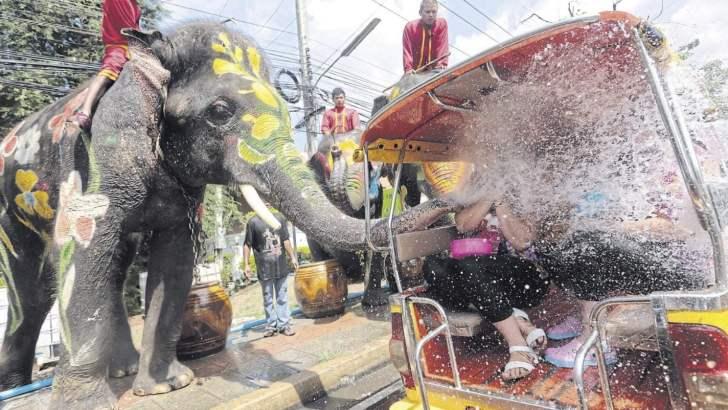 Pas op voor olifanten in Thailand