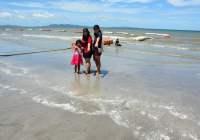 Duizenden kwallen op strand Jomtien