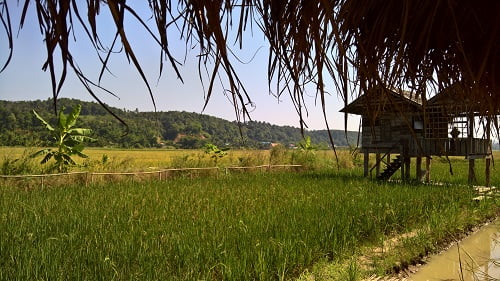Slapen en lunchen bij de Thaise boer